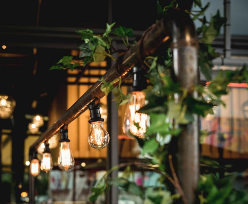 Restaurant & Cafe Design Trends - Using plants indoors - BE Furniture Sales
